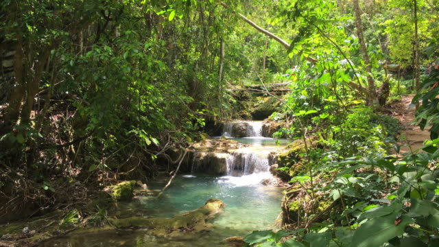 el nicho, cuba: beauty of nature in the escambray mountains - eco tourism stock videos & royalty-free footage
