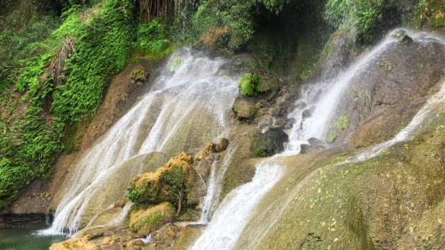 el nicho, cuba: beauty of nature in the escambray mountains - eco tourism stock videos and b-roll footage