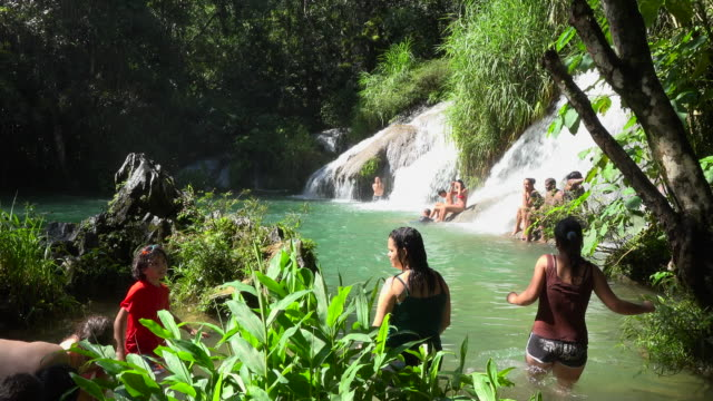 vídeos de stock, filmes e b-roll de el nicho is a natural park used for eco tourism in the tropical climate caribbean island. the famous place is visited by thousands of tourists every... - eco tourism