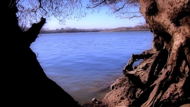 vidéos et rushes de el rio que se llena en accéléré - bras mort de cours d'eau
