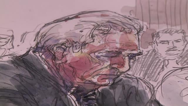 el tribunal que juzga al exdirector del fmi dominique strauss kahn por presunto proxenetismo indico que a dara a conocer su fallo el 12 de junio - acanthaceae stock videos & royalty-free footage