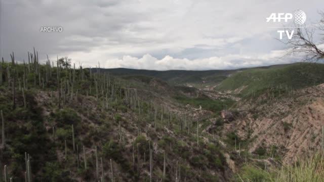el valle de tehuacan cuicatlan en mexico y el parque nacional de chiribiquete en colombia son dos de los candidatos para convertirse en patrimonio de... - unesco welterbestätte stock-videos und b-roll-filmmaterial