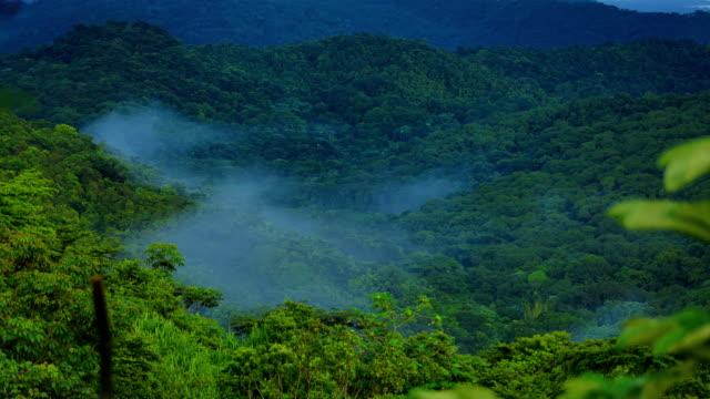 El Yunque National Forest, Puerto Rico