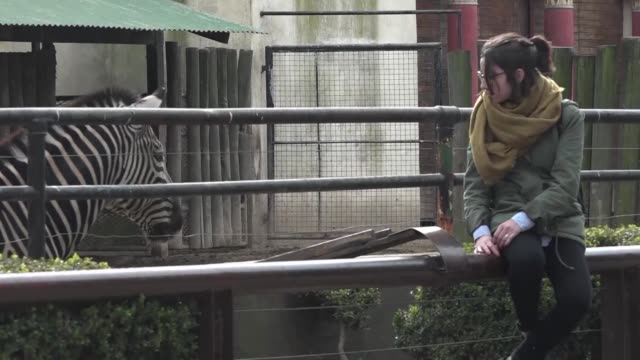El zoologico de la ciudad argentina de Buenos Aires inaugurado en el siglo XIX cierra sus puertas para reabrir como ecoparque con animales autoctonos...