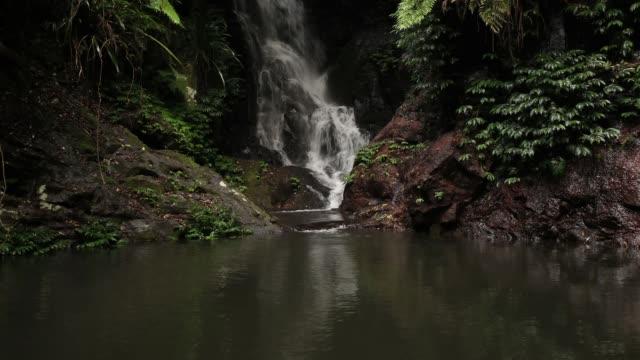 Elabana Falls - Time Lapse Of Rainforest Waterfall in Lamington National Park Australia