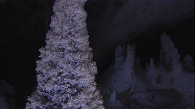 elaborate aragonite crystals cover a stalagmite in lechuguilla cave. available in hd. - stalagmite stock videos and b-roll footage
