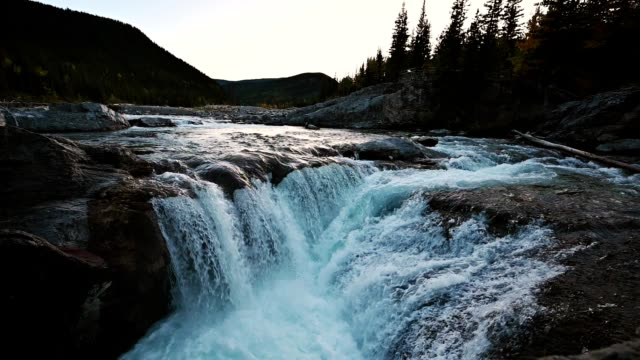 elbow falls flowing on rocks in evening at bragg creek in kananaskis - flowing water stock videos & royalty-free footage