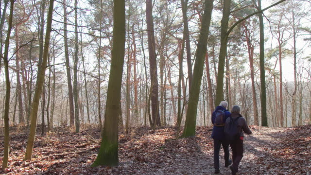 elderly couple hiking in woodland during winter - carefree stock videos & royalty-free footage