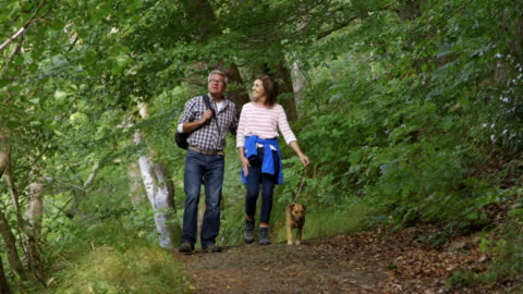 elderly couple out for a walk - hiking stock videos & royalty-free footage