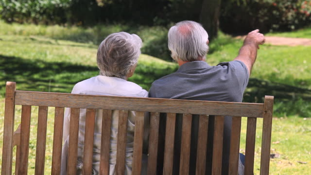 ms elderly couple sitting on bench in park / cape town, western cape, south africa - ベンチ点の映像素材/bロール