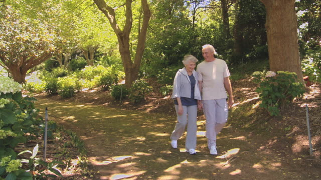 WS Elderly couple walking in forest / Cape Town, Western Cape, South Africa