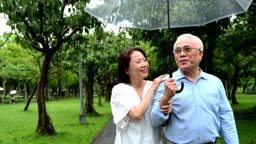 Elderly couple walking in park during rainy season