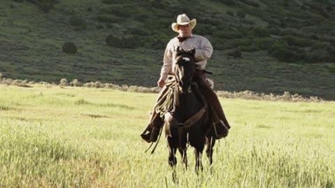 vídeos y material grabado en eventos de stock de mayor vaquero en su caballo en las montañas con un sol detrás de él - western usa