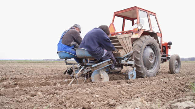 Elderly farm workers sowing the potato