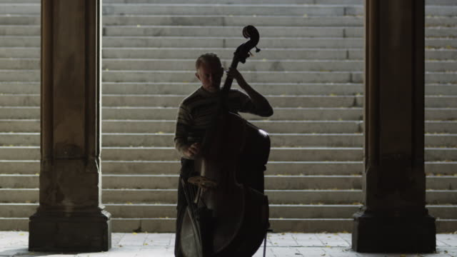 ws elderly man playing double bass by colonnade / new york city, new york state, usa - classical stock videos & royalty-free footage