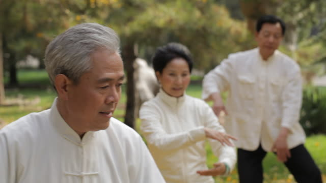 vídeos de stock, filmes e b-roll de ms pan selective focus elderly people doing tai chi in park / china - cultura chinesa