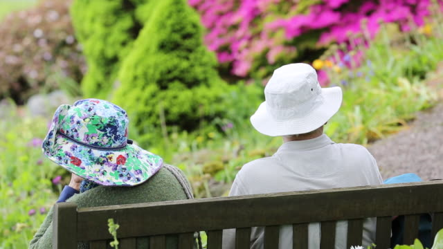 elderly visitors on a seat in holehird gardens, windermere, lake district national park, cumbria, uk, in spring - sonnenhut stock-videos und b-roll-filmmaterial
