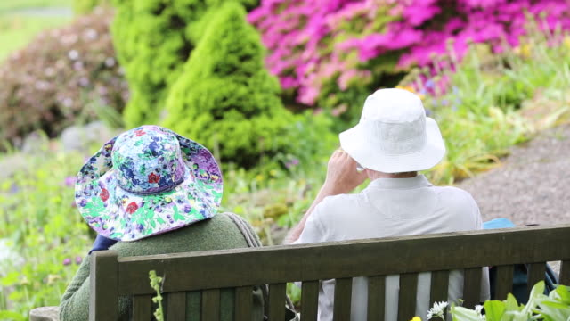 elderly visitors on a seat in holehird gardens, windermere, lake district national park, cumbria, uk, in spring - bench stock videos & royalty-free footage