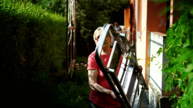 elderly woman carrying ladder - ladder stock videos and b-roll footage