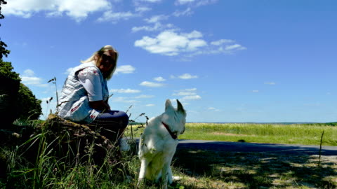 elderly woman with dog sits on a bench in spring - frau stock videos & royalty-free footage