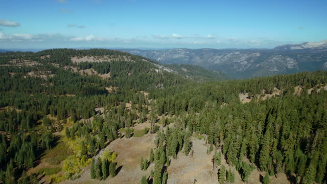 eldorado national forest landscape - national forest stock videos and b-roll footage