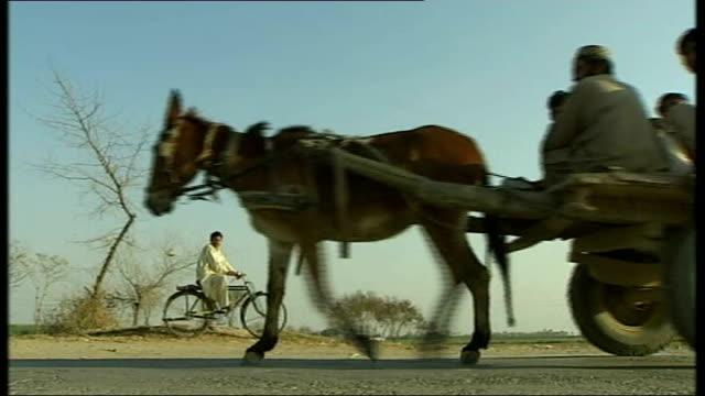 punjab ext good shots of agricultural workers in fields and bieng pulled along by donkey - punjab pakistan bildbanksvideor och videomaterial från bakom kulisserna