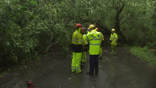 stockvideo's en b-roll-footage met electricity company chain saw crew looking at tree fallen across road and power lines, england, uk. - stroomuitval