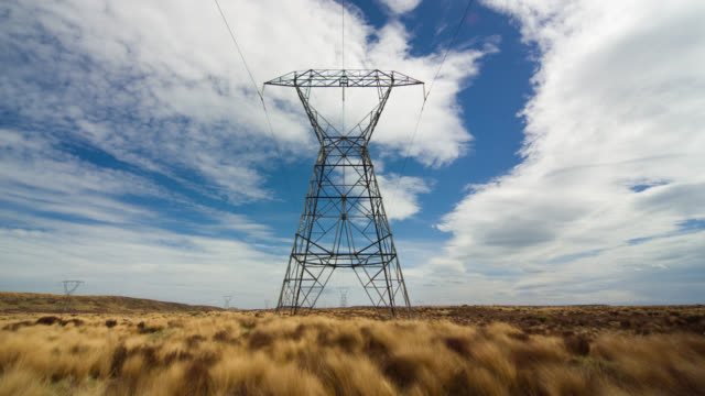 t/l, ws, electricity pylon in field, tongariro national park, central north island, new zealand - north island new zealand stock videos & royalty-free footage