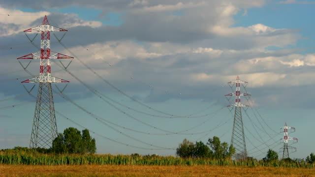 electricity pylon, in italy - traliccio elettrico video stock e b–roll