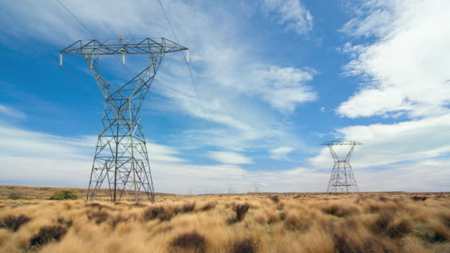 t/l, ws, electricity pylons in field, tongariro national park, central north island, new zealand - north island new zealand stock videos & royalty-free footage