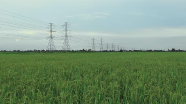 stockvideo's en b-roll-footage met antenne elektriciteit pylonen in het platteland voorraad video - stroomtransformator
