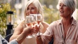 Elegant senior friends toasting and enjoying glass of wine together