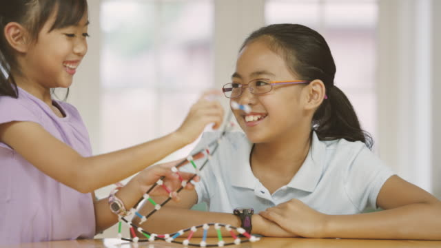 elementary aged sisters learning about dna and biology with their father while home schooling - east asian ethnicity stock videos & royalty-free footage