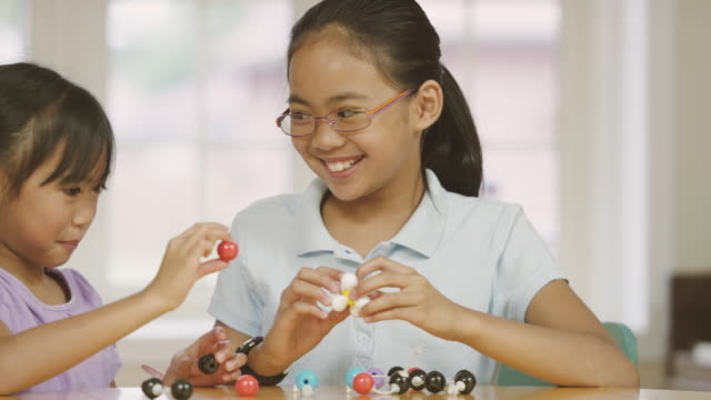 elementary aged sisters studying biology while home schooling - fatcamera stock videos and b-roll footage