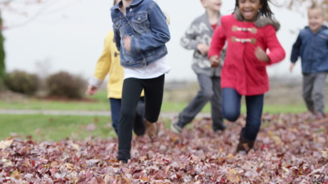 Elementary Children Play in Leaves on Schoolyard