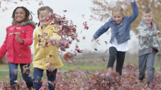 elementary children play in leaves on schoolyard - school yard stock videos and b-roll footage