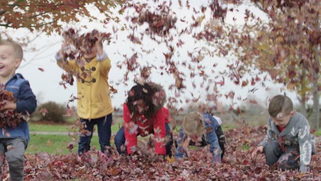 vídeos de stock, filmes e b-roll de crianças de escola primária jogue folhas de outono no ar - unidade