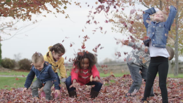 elementary children throw autumn leaves in the air - children only stock videos & royalty-free footage