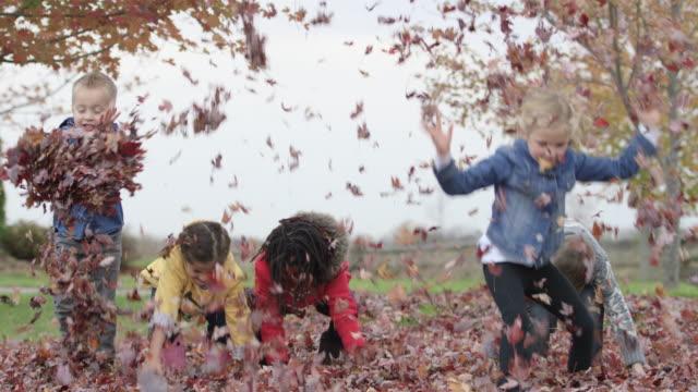 vídeos de stock, filmes e b-roll de crianças de escola primária jogue folhas de outono no ar - brincadeira de pegar