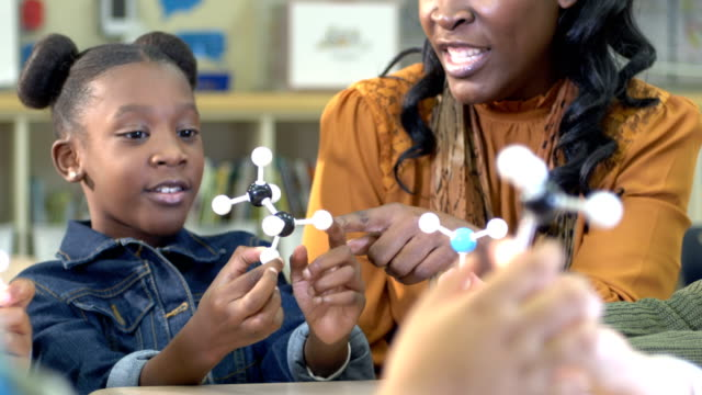 elementary school stem lesson - stem topic stock videos & royalty-free footage