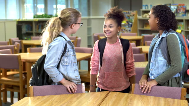 elementary school students in library - only girls stock videos & royalty-free footage