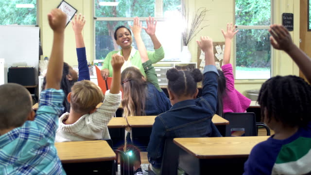 elementary teacher, multi-ethnic children raising hands - 6 7 years stock videos & royalty-free footage