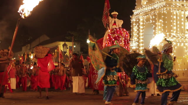 ms elephant and dancers performing in buddhist festival or procession 'esala perahera' in front of 'temple of tooth' audio / kandy, central province, sri lanka - sri lankan culture stock videos & royalty-free footage