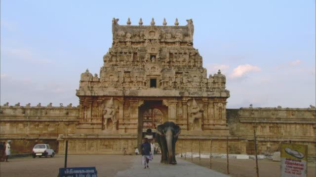 la ws elephant and man walking on path through gateway of brihadeeswarar temple / thanjavur, india - bas relief stock videos & royalty-free footage