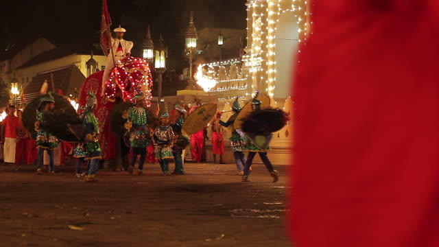 stockvideo's en b-roll-footage met ms pan elephant and young dancers performing in buddhist festival or procession 'esala perahera' in front of 'temple of tooth' audio / kandy, central province, sri lanka - sri lankaanse cultuur
