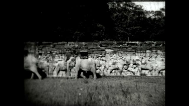 elephant appear in earliest known film of angkor wat shot by travelogue pioneer burton holmes - indochina stock videos and b-roll footage