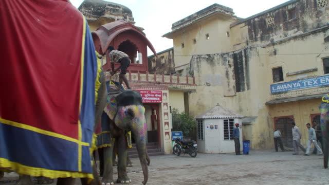Elephant drivers lead elephant past camera