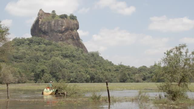 elephant moving through the reservoir near lion rock / sigiriya, sri lanka - rock formation stock videos & royalty-free footage