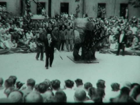 elephant on city street - wounded soviet soldiers watching performance - elephant performing in circus arena - kangaroo boxing - jugglers - figure... - thoroughfare stock videos & royalty-free footage