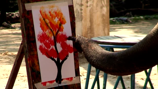vídeos de stock, filmes e b-roll de elefante pintura de arte - elefante